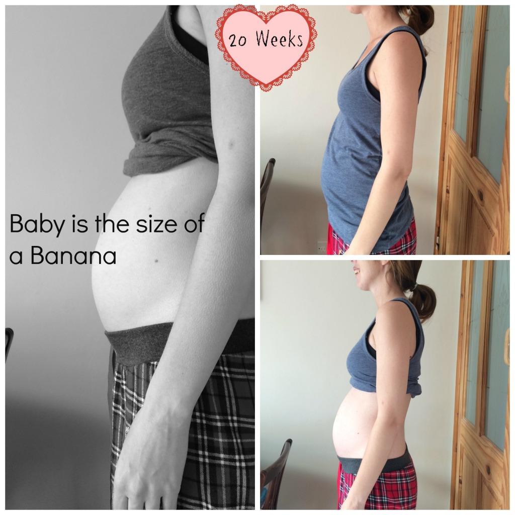 20 week baby bump