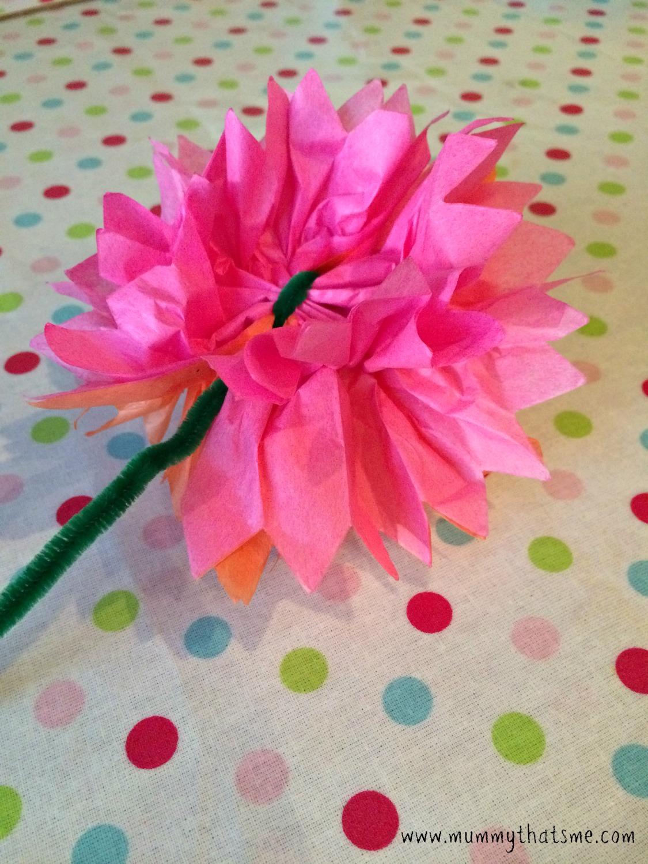 Tissue paper flower kits tierianhenry tissue paper flower kits mightylinksfo