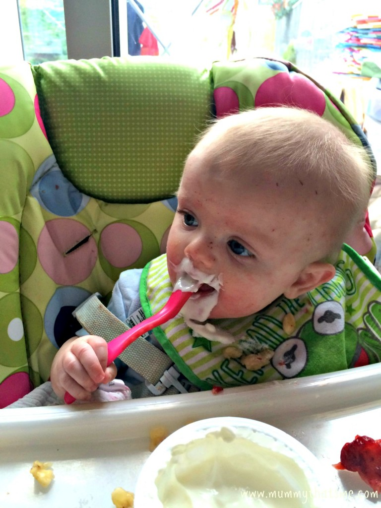 Baby led weaning yoghurt