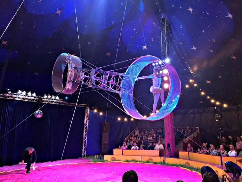 Paulos Circus at Darts Farm