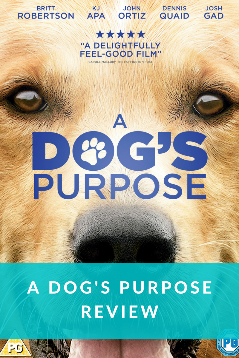 A dog's Purpose feature image