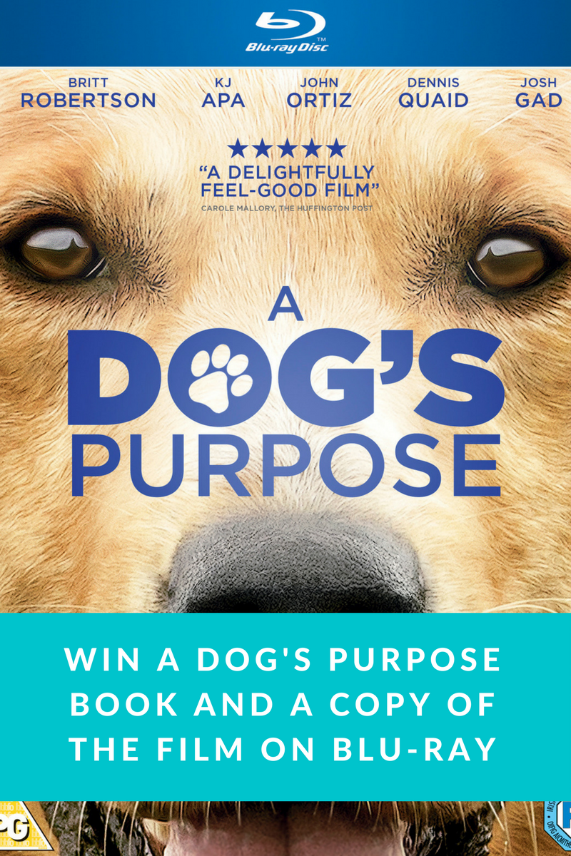 A dog'sPurpose